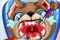 Szczenięcy Dentysta